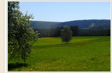 Ortsverwaltung Dietersweiler