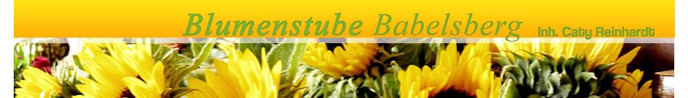 Blumenstube Babelsberg Inh. Caty Reinhardt