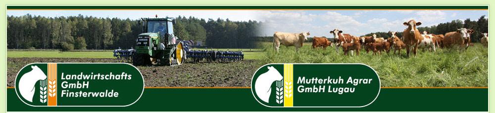 Landwirtschafts-GmbH Finsterwalde