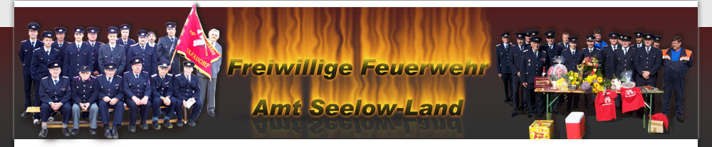 Feuerwehren Amt Seelow