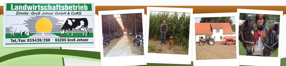 ZGJ Landwirtschafts GmbH
