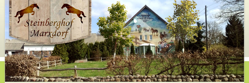 Steinberghof Reiterhof Marxdorf/Vierlinden