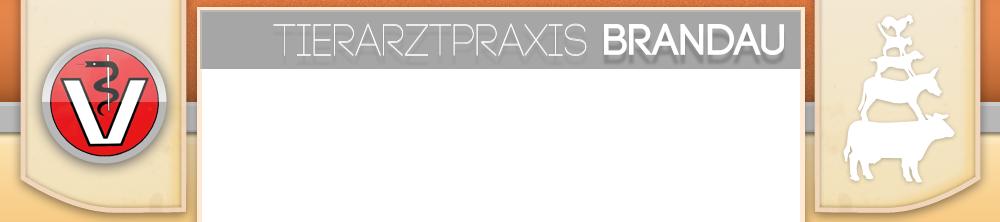 Tierarztpraxis Brandau