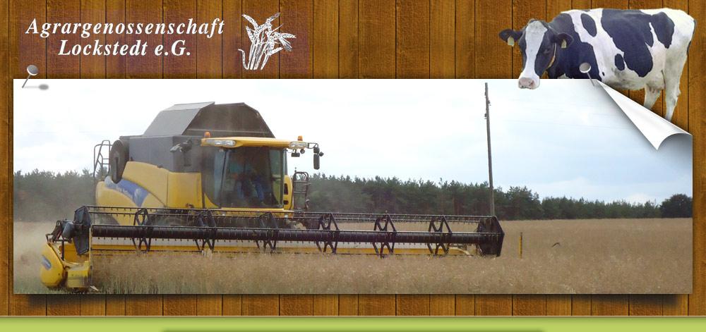 Agrargenossenschaft e. G. Lockstedt