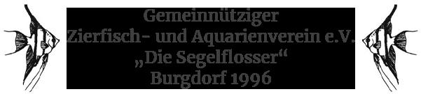 Die Segelflosser Burgdorf e.V.